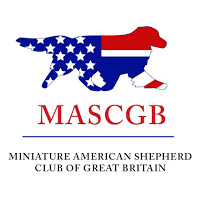 Miniature American Shepherd Club of Great Britain